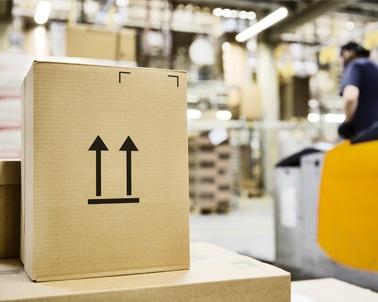 Pôle conseil : expertise en entreposage, magasinage, stockage.